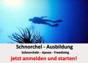 TSC_Wuppertal-Tauchen__Tauchen_lernen-Schnorcheln-jetzt_starten