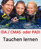 Tauchcenter-Wuppertal_Meeresauge-Scuba-Diving-Tauchen_lernen