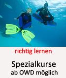 Tauchcenter-Wuppertal_Meeresauge-Tauchen_lernen-Spezialkurse-001